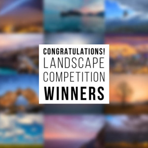 Landscape Competition Winners