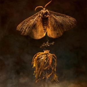 Exhibition Launch: beyond Beyond by Kali van der Merwe