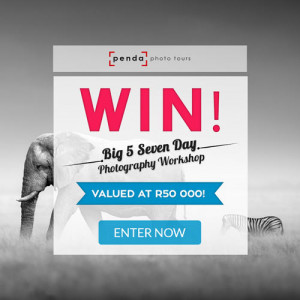 WIN a 7 Day Photographic Safari Workshop with Cameraland Cape Town and Penda Photo Tours