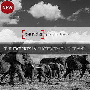 Cameraland Partners with Penda, the Experts in Photographic Travel