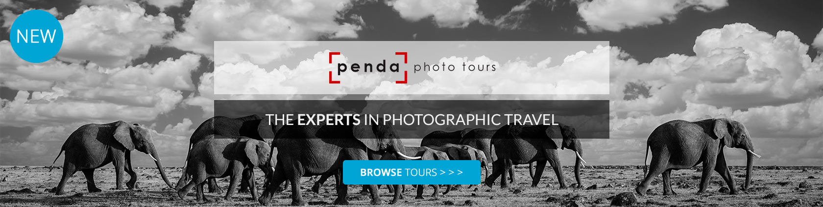 Penda Photo Tours