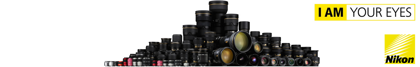 Lenses Type