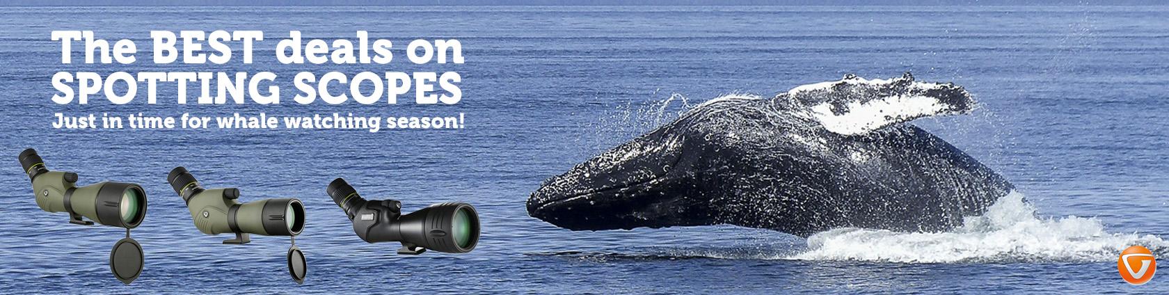 Whale Season Spotting Scopes